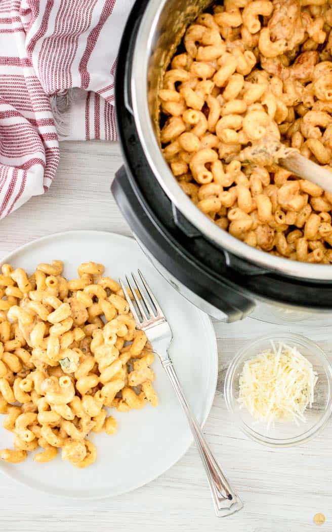 pasta on a plate and in a pressure cooker
