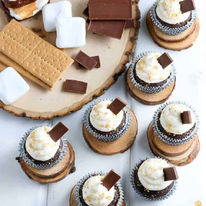 square pic of smores cupcakes for recipe card