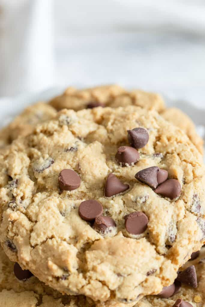 close up of chocolate chip cookie