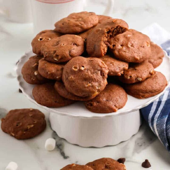 tray of cocoa cookies