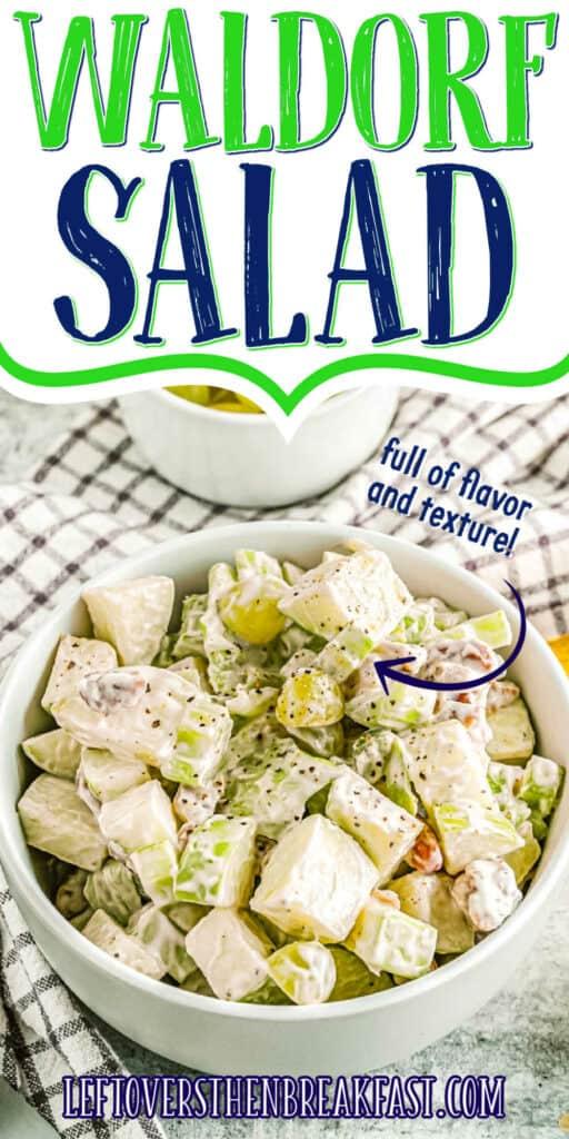 "bowl of salad with text ""waldorf salad"""