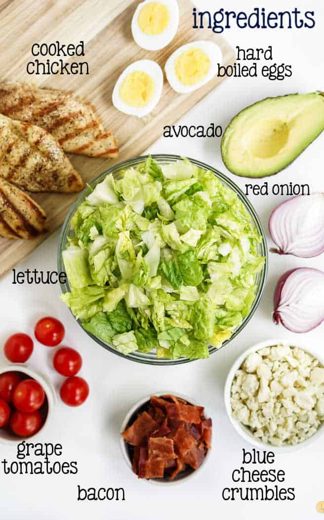 labeled picture of salad ingredients